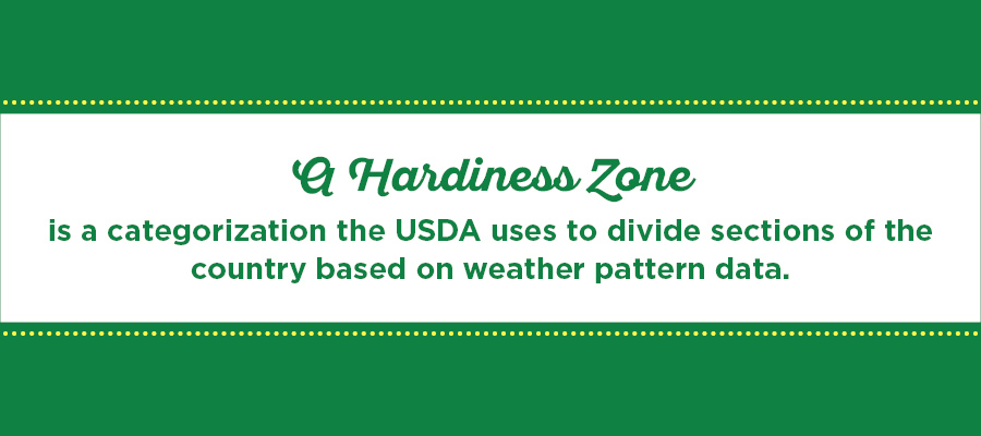 Everything You Need To Know About Planting Zones Garden